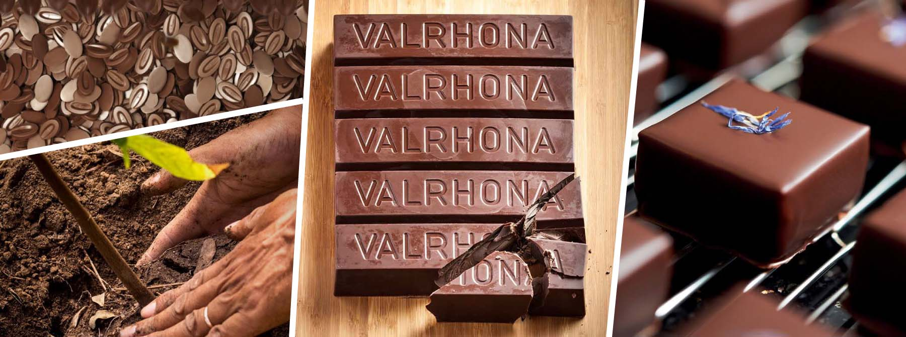 CHOCOLATERA VALRHONA: LA CASA DEL MEJOR CHOCOLATE DEL MUNDO